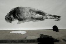Pferdische Körper 5 (2010)