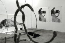 Installation Pferdische Körper an der Regionale 11, Fabric Culture